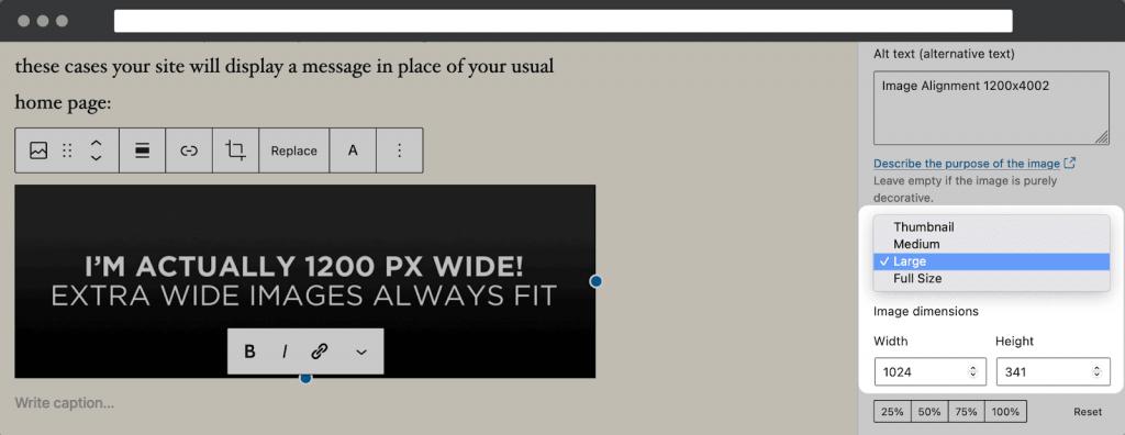 wordpress image size option